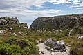 Table Mountain, Cape Town (MP) 2018 097.jpg