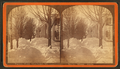 Taconic Hotel, Manchester, Vt. Winter scene, by Allen, H. S. (Henry S.) 2.png