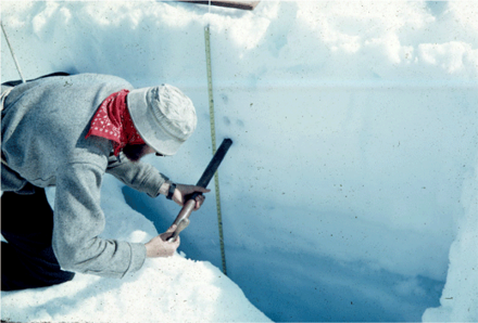 Snow pit on the surface of a glacier, profiling snow properties where the snow becomes increasingly dense with depth as it metamorphoses towards ice Taku glacier firn ice sampling.png