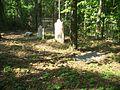 Tallahassee FL Blackwood-Harwood Cemetery03.jpg