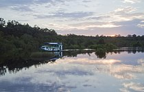 Tanjung Puting sunset cruise.jpg