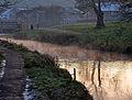 Tavistock canal at dusk.jpg