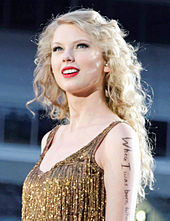 A photograph of Taylor Swift performing at Heinz Field
