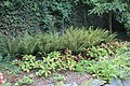 Terra Botanica 2017.08.23 Angers 115.jpg
