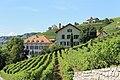 Terrasses de Lavaux - panoramio (101).jpg