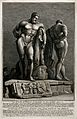 The Farnese Hercules from the front and back. Engraving by G Wellcome V0048047.jpg