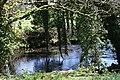 The River Lynher by Plushabridge - geograph.org.uk - 410666.jpg