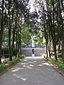 The forest road in Wushe Incident Memorial Park.jpg