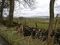 The view to the Dales - geograph.org.uk - 151380.jpg
