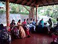 Thusharagiri falls 11.jpg