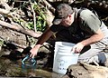 Tim Hovey, a senior environmental scientist, specialist, with the California Department of Fish and Wildlife (CDFW), releases unarmored threespine sticklebacks into the wild. (33407360104).jpg