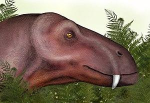 Titanophoneus - Image: Titanophoneus head