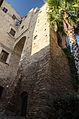 Torre di Massimo Avvistamento.jpg