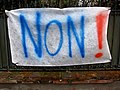 Toulouse - Avenue de Lardenne - 20130402 (1).jpg