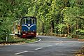 Toy Train of Darjeeling.jpg