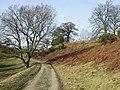 Track to Munslow Common, Shropshire - geograph.org.uk - 676116.jpg