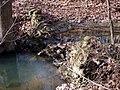 Trail 2 PB250228.jpg