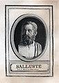 Tripota Sallust portraits 385 2 385 0587 p 900.jpg