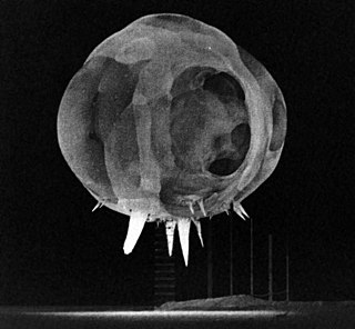 """Rope trick effect """"Spikes"""" emanating from suspended nuclear explosions"""