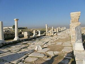Turkey Laodicea