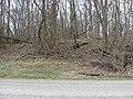 Turtle Creek Embankment eastern side of road cut.jpg