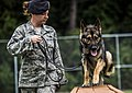 U.S. Air Force Staff Sgt. Angela Lowe, a military working dog handler with the 628th Security Forces Squadron (SFS), leads Szultan, a military working dog with the 628th SFS, through an obstacle course Sept 140924-F-LR006-023.jpg