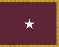 US Army Medical Department Brigadier General Flag.png