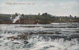 Hugh J. Chisholm - Umbagog pulp mills at Livermore Falls on the Androscoggin River in 1909