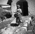 """V takih """"cajnah"""" so nosile ženske iz sejma razno za kuhinjo (tudi kokoši naprodaj). Šentviška Gora 1954.jpg"""