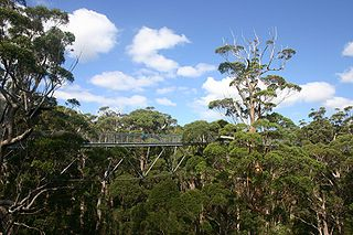 Walpole-Nornalup National Park Protected area in Western Australia