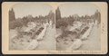 Vassar College grounds, Poughkeepsie, N.Y, from Robert N. Dennis collection of stereoscopic views.png