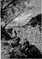 Verne - P'tit-bonhomme, Hetzel, 1906, Ill. page 279.png