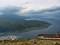 View from Narvik mountain.jpg