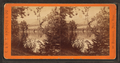 View on the French Broad River, near Warm Springs, from Robert N. Dennis collection of stereoscopic views.png