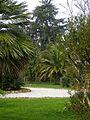 Villa Pratola - Santo Stefano di Magra - il giardino mediterraneo.JPG