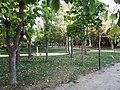 Villavendimio park 7.jpg