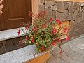 Visit a Castelsardo 33.jpg