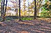 foto van Landweer: Groote Heide