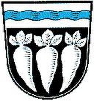 Pfatter - Image: Wappen Pfatter