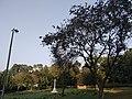 War cemetery Chittagong 2020 9.jpg