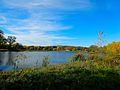 Warner Park Lagoon during Autumn - panoramio.jpg
