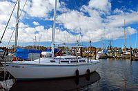 Warrenton Marina (Clatsop County, Oregon scenic images) (clatDA0042a).jpg