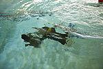 Water Survival Training Exercise 141208-M-OB177-130.jpg