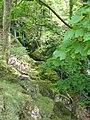 Waterfall at Llanfihangel-y-pennant - geograph.org.uk - 429991.jpg