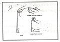 Weapon Sling line drawing.jpg