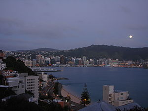English: View of Wellington Harbour from Orien...