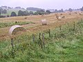 West Yorkshire Sculpture Park (3807419034).jpg