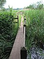 Wherryman's Way - footbridge over ditch - geograph.org.uk - 1358351.jpg
