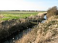 Whitfield Sewer on Chislet Marshes - geograph.org.uk - 1179371.jpg