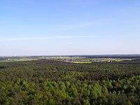 Widok z Dziewiczej Góry.jpg